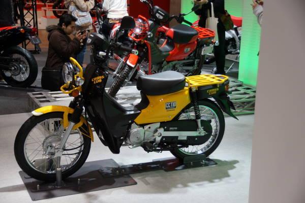 004 cross cub.JPG