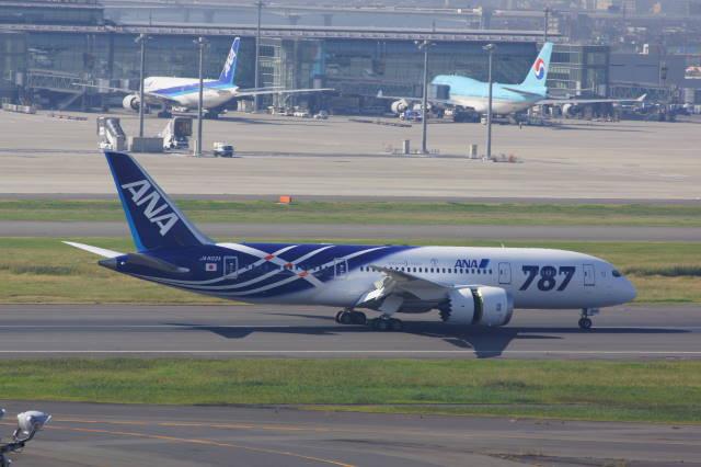 001 landing 787.JPG